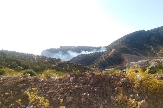آتش سوزی منطقه جنگلی ارغوان ایلام مهار شد