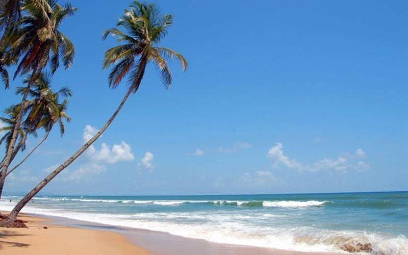 ساحل کولوا؛ ساحلی شگفت انگیز در گوا