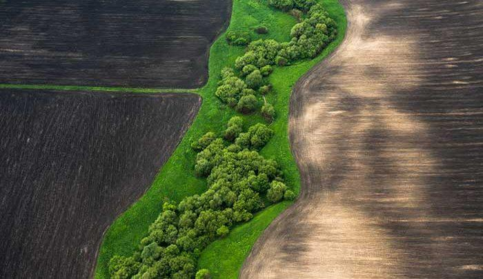 عجیب،زیبا و تحسین برانگیز؛عکس هایی متفاوت از یک سرزمین رویایی
