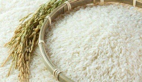 شرایط غلظت آفلاتوکسین موجود در برنج ایرانی