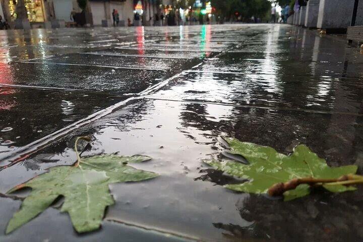 خبرنگاران میزان بارندگی های قزوین 210 میلی متر بوده است