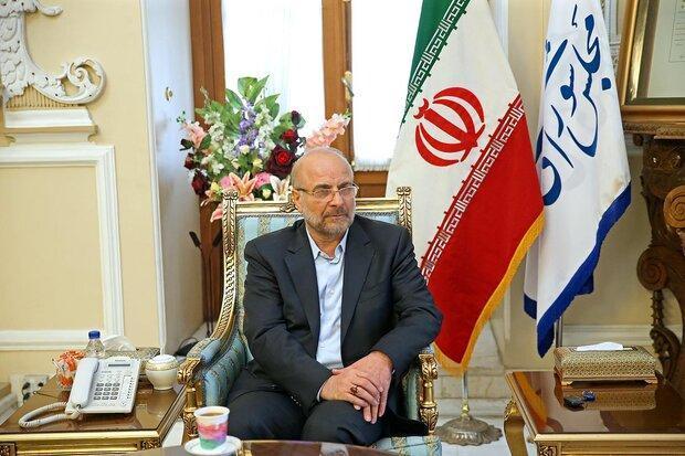 همکاری دوجانبه دومای روسیه و مجلس شورای اسلامی را مهم می دانیم