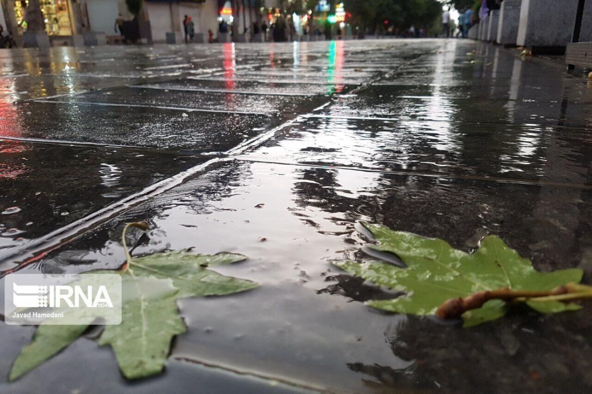 خبرنگاران هواشناسی برای بوشهر رگبار پراکنده باران پیش بینی کرد