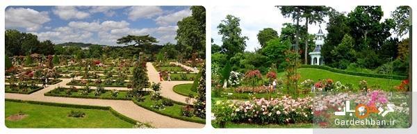 پارک بولونی پاریس؛منطقه محافظت شده شکار افراد سلطنتی، عکس