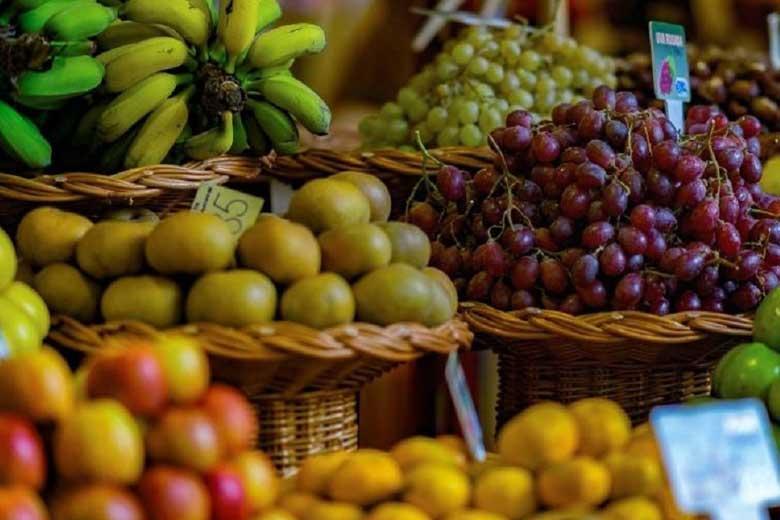 نقش موثر تغذیه بر تسریع بهبودی بدن در برابر کرونا