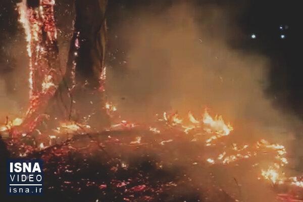 آتش در ارتفاعات کردلان
