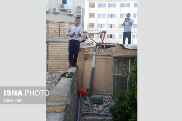زنده گیری مار سمی 2 متری در زنجان